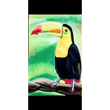 Tucán, Animales, Obra De Arte, Oleo, Acrílico, Cuadro