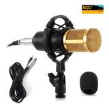 Micrófono Bm-800