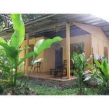 Hidden House, Jungle Garden